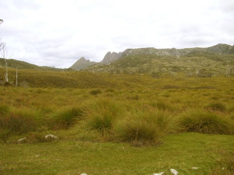 Cradle Mountain, Tasmanien