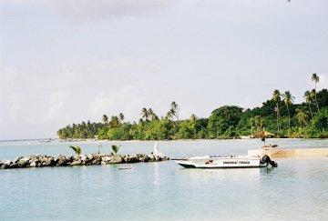 Charlottville Tobago