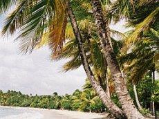 Martinique Karibik