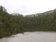 Gordon River Tasmanien