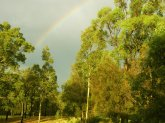 Hunter Valley Australien