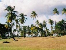 Tobago Golfplatz Mt. Irvine