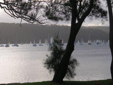 Segler bei Pittwarer, Australien
