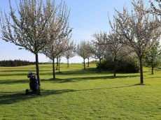 Golfclub Gut Rieden, Bayern, Am Starnberger See, Fairway
