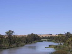 Murray River Australien