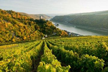 Rhein im Saarland, Deutschland