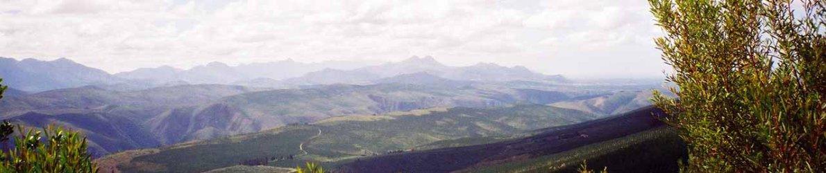 Tsitsikamma Lodge Südafrika