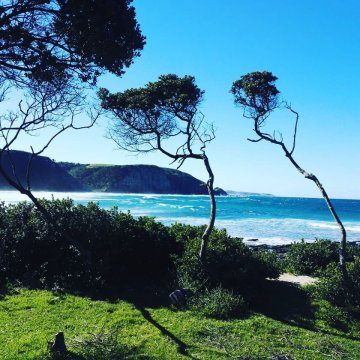 Mdumbi-Beach - Transkai - Südafrika