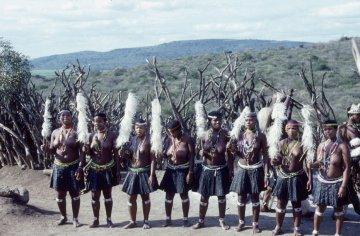 Krieger Kwazulu Natal