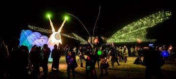 Burning Man - Karoo - Südafrika