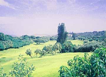 Southbroom Südafrika