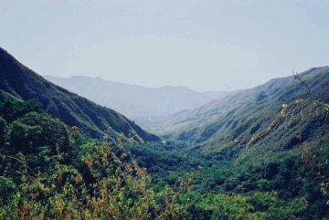 Parque Nacional Henri Pittier, Venezuela