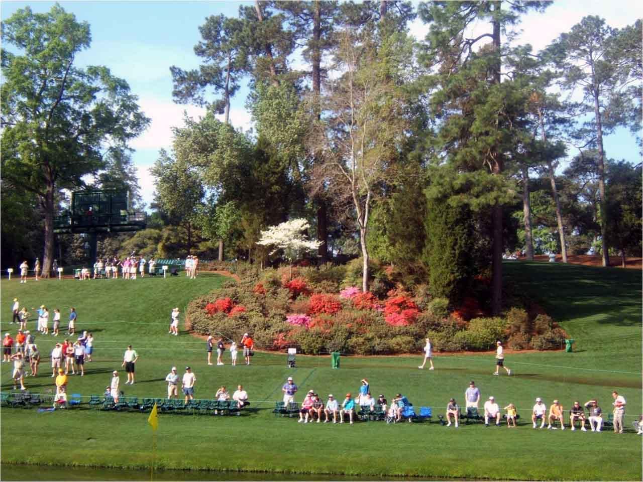 die vier major golf turniere: us masters - u.s. open - open