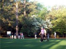 Augasta National Golf Club, Augasta, Georgia, USA
