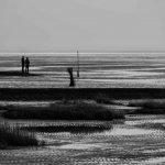 Mario Feigel Fotografie - Seelandschaften