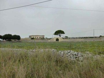 Sizilien bei Donnafugata