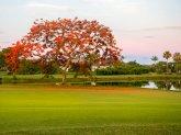 USA - Florida -The Dunes Golf & Tennis Club