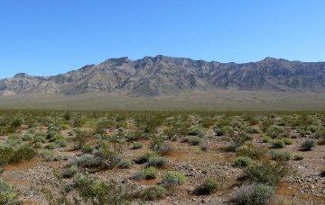 Mojave Wüste - Kalifornien - USA