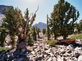 USA - Nevada - Prometheus
