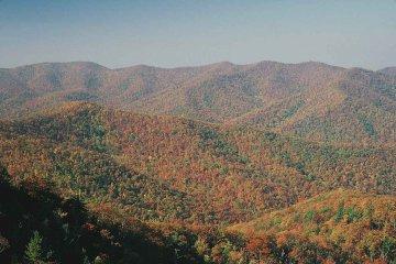 USA - Virginia