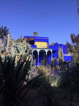Marokko - Marrakesch - Jardin Majorelle