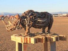 Africa Burn - Südafrika