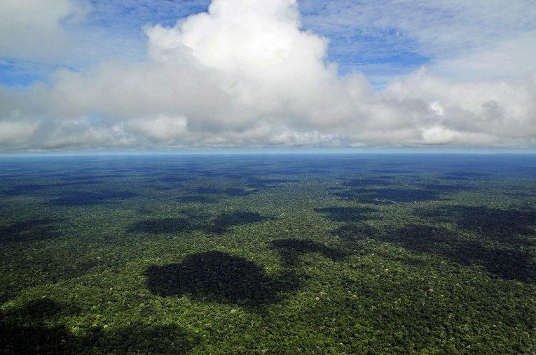 Brasilien - Amazonas