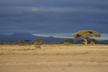 Kenia - Afrika