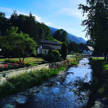 Vermes - Schweiz