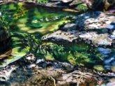 Landscape Vol. II: Benjamin Nachtwey, Christina Puth und Katrin Roeber